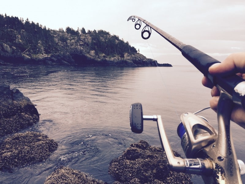 Premium and Discount Fly Fishing Flies